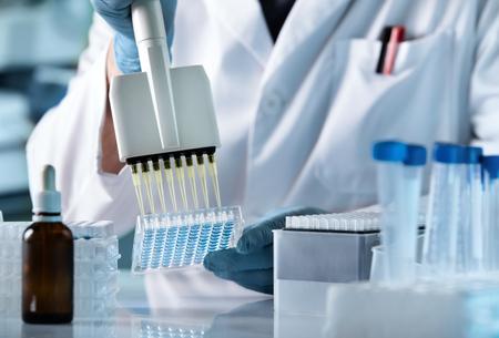 Manos de científico que trabaja con pipeta multicanal y placas de pocillos múltiples / técnico de investigación con multipipeta en laboratorio genético