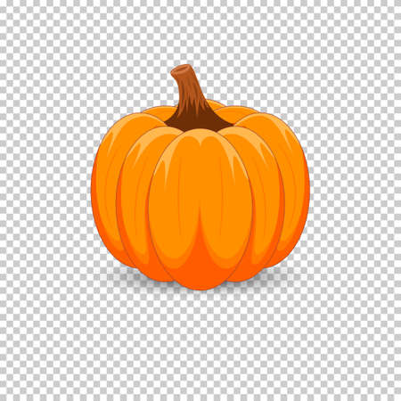 Orange Kürbis auf einem transparenten Hintergrund