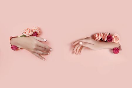 Set hands with artificial flowers sticking out of hole pink paper background. Hand in various poses, the pattern layout for your collage. Cosmetics hand skin care, moisturizing and wrinkle reduction Zdjęcie Seryjne - 133110750