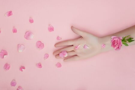 Hand with pink flowers and petals lying on a paper background. Cosmetics for hand skin care. Natural petal cosmetics, essential oils, anti-wrinkle and anti-aging hand care