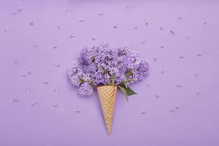 Top view of laying lilac flowers lying on the table, spring has come, copy space purple background. Lilac blossom, spring cosmetics for face and hands