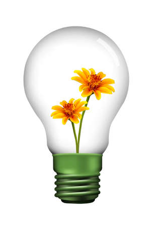 overuse: yellow flower in Lamp