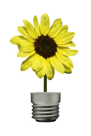 Yellow flower lamp photo