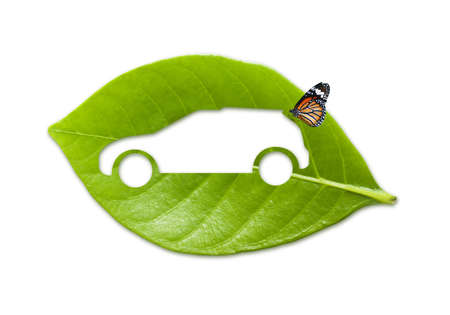 Eco car with natural wholesome II