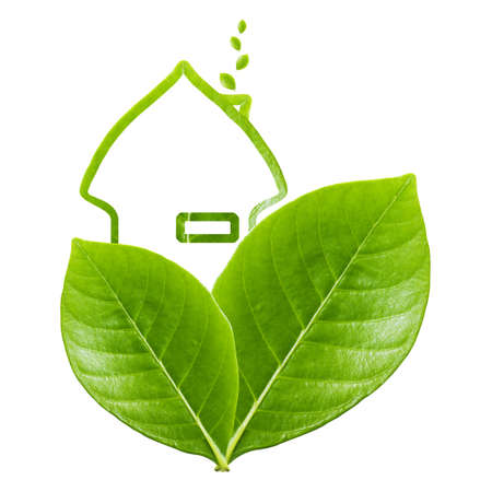 environment friendly: Green house symbol