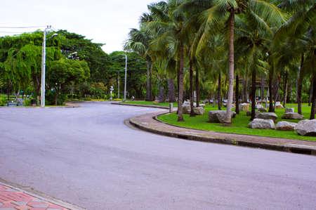 Road in garden photo