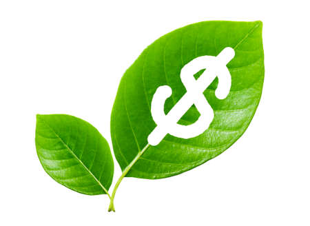 save: green leaf with a cut out dollars, Concept save the earth, save money Stock Photo