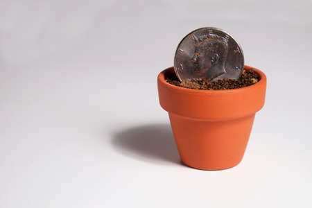 Dollar Coin Planted in a Pot Фото со стока