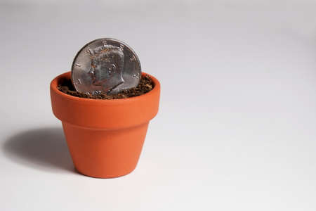 Dollar Coin Planted in a Clay Pot Фото со стока