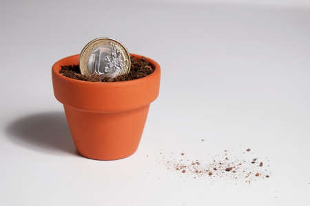 Euro coin planted in a pot II