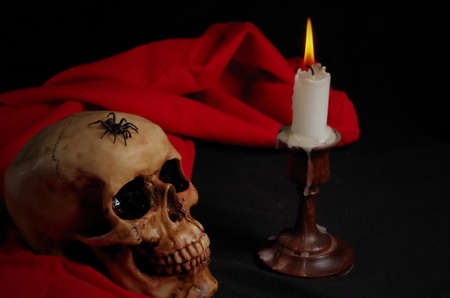 Real spider crawling on skull with candle, with black and red background. Halloween and Gothic scene