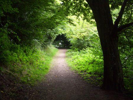 Nature trail in Great Malvern photo