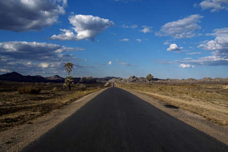 Empty desert road stretching to horizon  Stock Photo - 12360114