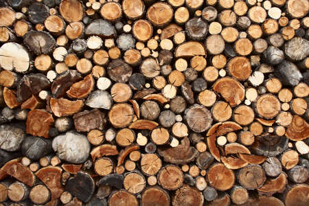 Pile of chopped fire wood prepared for winter photo