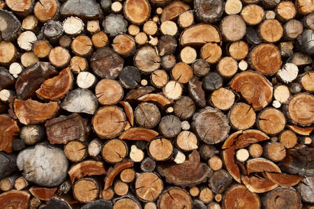 Pile of chopped fire wood prepared for winter Stock Photo - 15161199