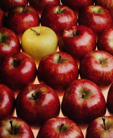 Red apples but one yellow