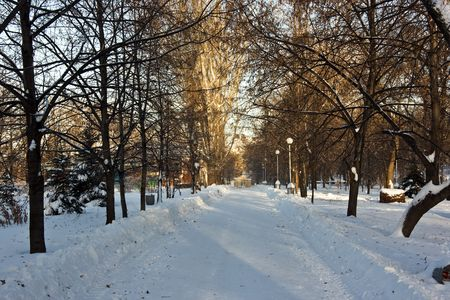 Winter snowy town park in Samara. Russia. Stock Photo - 2298152
