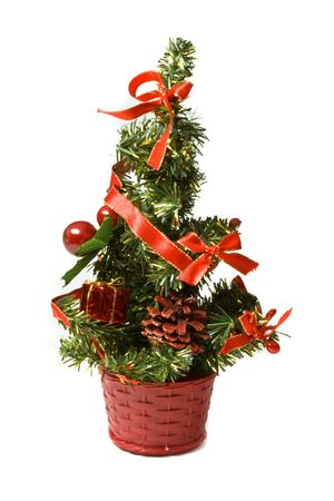 Little decorative fir in the basket. Isolated on white background photo