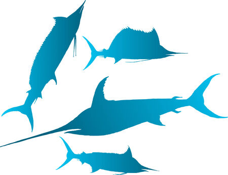 raptorial: Vector illustration silhouettes of marlin, spearfish, sailfish and sword-fish