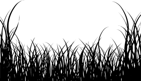 tree drawing: Vector illustration grass background for design usage