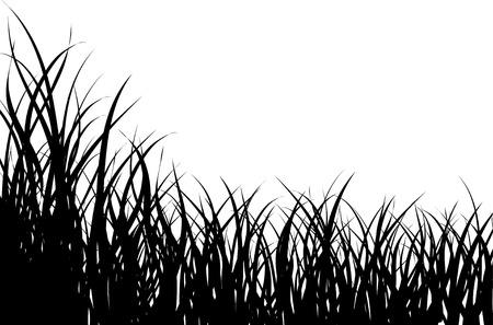 illustration herbe: Illustration vectorielle herbe de base pour la conception d'utilisation  Illustration