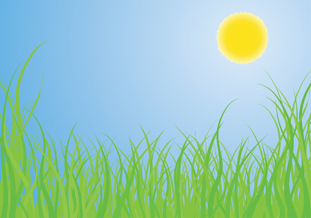 Vector illustration grass background for design usage Stock Vector - 3050263