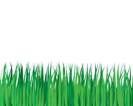 Vector illustration grass background for design usage Vector