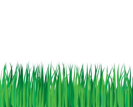 Vector illustration grass background for design usage Stock Vector - 3175952