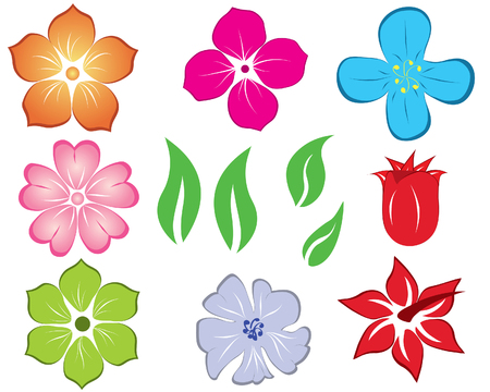 vector flowers: Set of different flower and leaves for self-supporting making floral ornate. Illustration