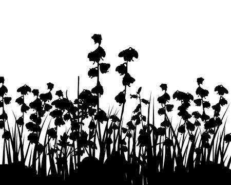 rebeldia: Ilustración vectorial hierba de antecedentes para el diseño uso