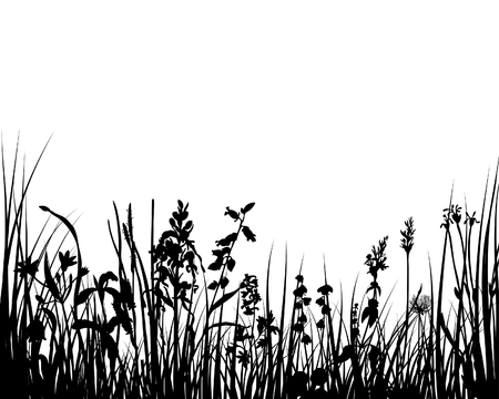 spring bed: Vector illustration grass background for design use Illustration
