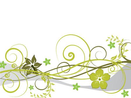 floral vector: Floral vector de fondo con hojas y flores