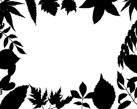 floral silhouette picture frames for design use Vector