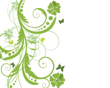 floral vector: Floral vector de fondo con mariposas y flores