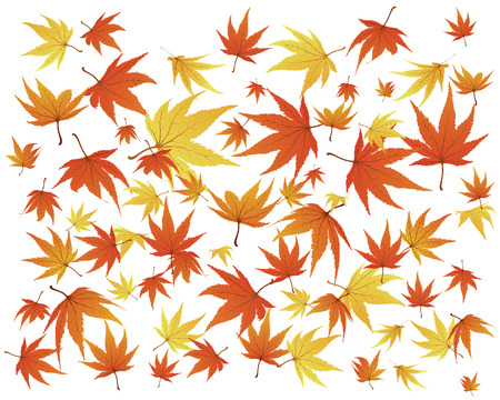 Twisted row of autumn  maples leaves. Vector illustration. Stock Vector - 3570965