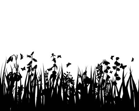 Grass silhouettes ornate on the white background Stock Vector - 3607559