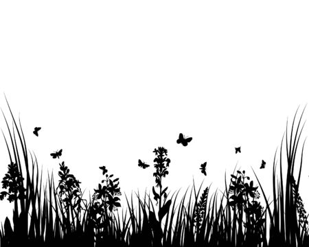Grass silhouettes ornate on the white background Stock Vector - 3607558