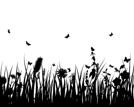 Grass silhouettes ornate on the white background Stock Vector - 3858632