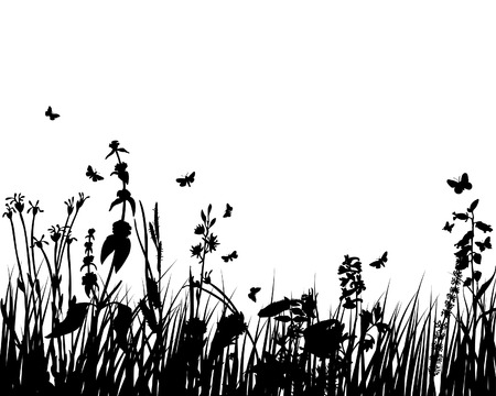 landscaped garden: Grass silhouettes ornate on the white background