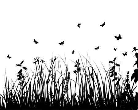 Grass silhouettes ornate on the white background Stock Vector - 3984465