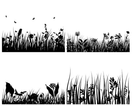 Set of four vector grass silhouettes backgrounds Stock Vector - 4183471