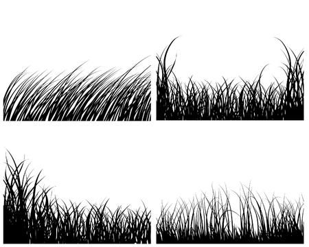 Set of four vector grass silhouettes backgrounds  Illustration