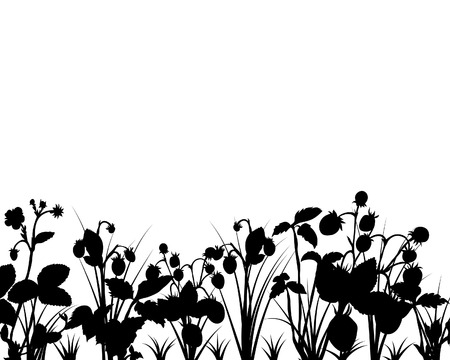 Vector silhouettes of strawberries and grass bushes Vector