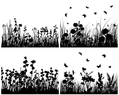 black butterfly: Set of four vector grass silhouettes backgrounds  Illustration