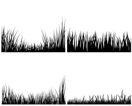 Set of different meadow vector grass silhouettes  Vector