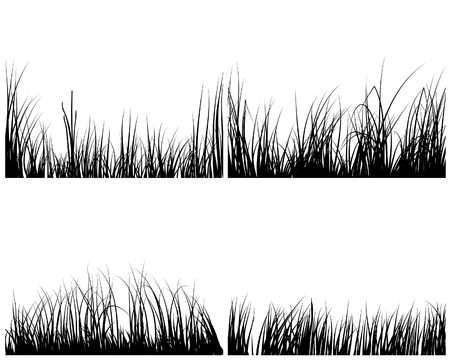 Set of different meadow vector grass silhouettes  Stock Vector - 4317027