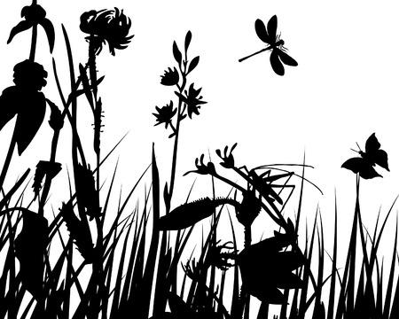 zwart wit tekening: Vector gras silhouettes achtergronden met insecten