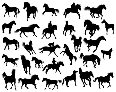 Big vector collection of different horses silhouettes Vector