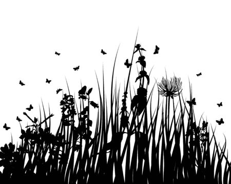 Vector grass silhouettes backgrounds with insects Stock Vector - 4522181