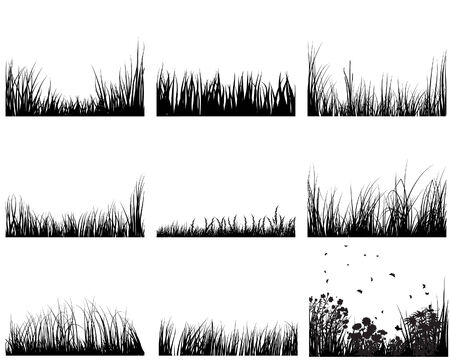 landscaped: Set of vector grass silhouettes backgrounds for design use